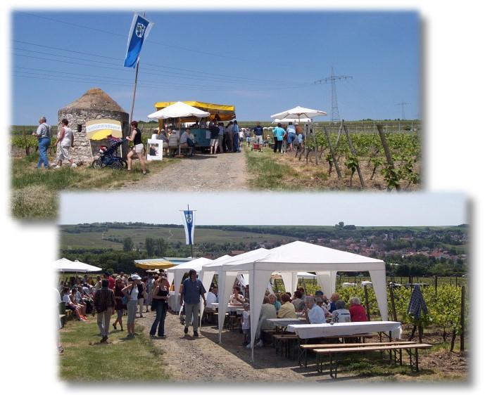 Weinwandern in Gundersheim